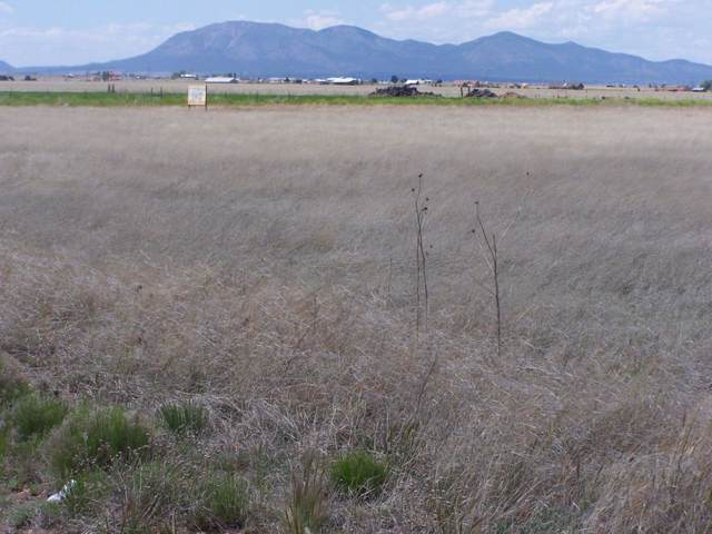 0 Captain Street, Moriarty, NM 87035 (MLS #960138) :: Campbell & Campbell Real Estate Services