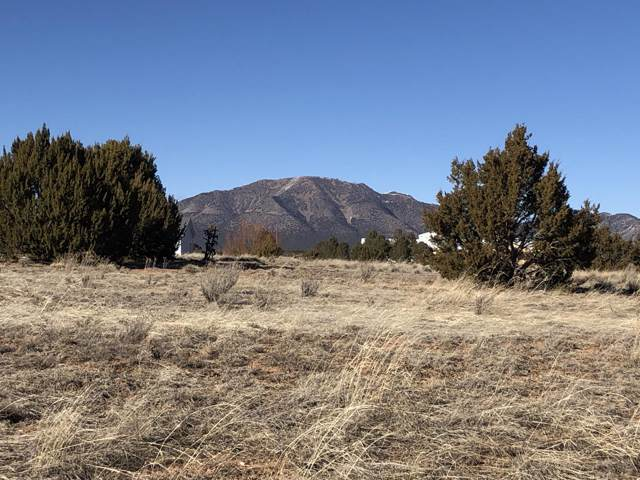 23 Joe Mae Road, Edgewood, NM 87015 (MLS #960188) :: Campbell & Campbell Real Estate Services