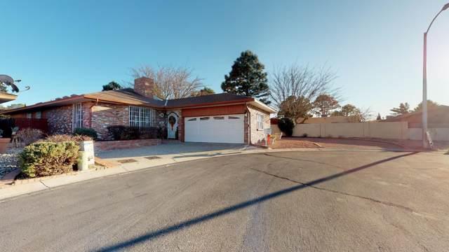 4800 Vista Del Oso Court NE, Albuquerque, NM 87109 (MLS #960229) :: Campbell & Campbell Real Estate Services