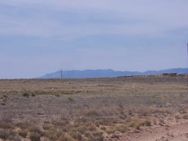 Marshall Road, Estancia, NM 87016 (MLS #960302) :: Campbell & Campbell Real Estate Services