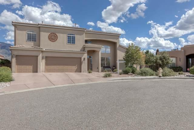 8834 Black Oak Court NE, Albuquerque, NM 87122 (MLS #960367) :: Campbell & Campbell Real Estate Services