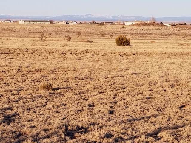 4 Nettle Road, Moriarty, NM 87035 (MLS #960400) :: Campbell & Campbell Real Estate Services