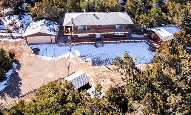 888 State Highway 165 Road, Placitas, NM 87043 (MLS #960452) :: Campbell & Campbell Real Estate Services