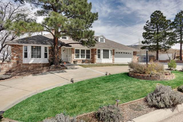 733 Stagecoach Road SE, Albuquerque, NM 87123 (MLS #960586) :: The Bigelow Team / Red Fox Realty
