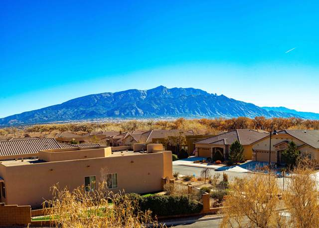 1028 Desert Willow Court, Bernalillo, NM 87004 (MLS #960646) :: Campbell & Campbell Real Estate Services