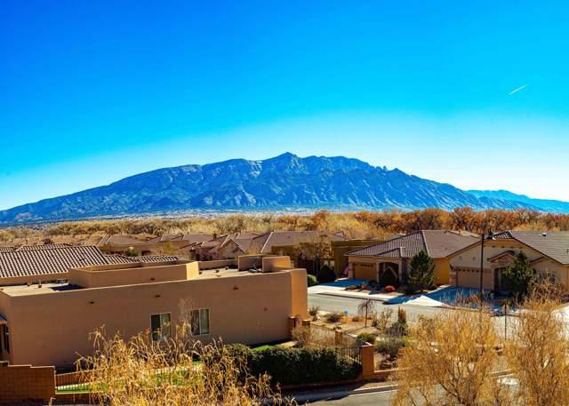 1028 Desert Willow Court, Bernalillo, NM 87004 (MLS #960646) :: Sandi Pressley Team