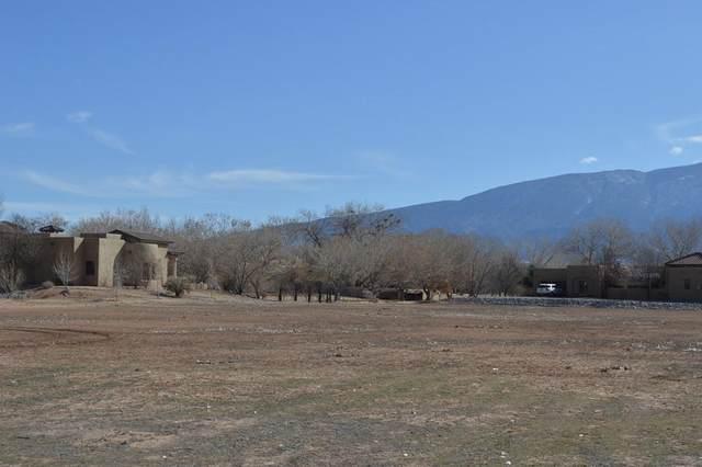 659 Camino Vista Rio, Bernalillo, NM 87004 (MLS #960833) :: Campbell & Campbell Real Estate Services