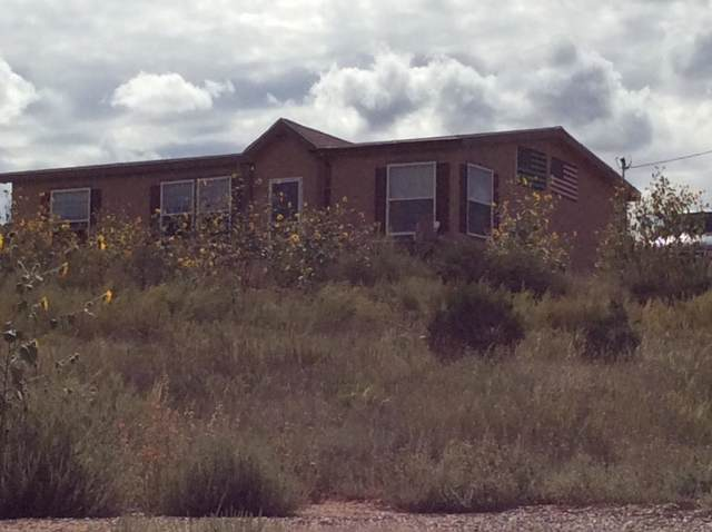 11 Red Diamond Road, Edgewood, NM 87015 (MLS #960852) :: Campbell & Campbell Real Estate Services