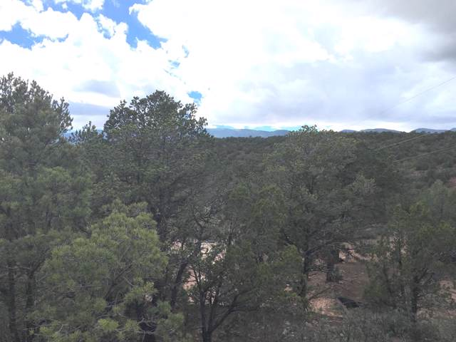 49 Kitsch Road, Tijeras, NM 87059 (MLS #960862) :: Campbell & Campbell Real Estate Services