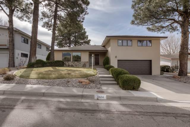 1024 Matador Avenue SE, Albuquerque, NM 87123 (MLS #960867) :: Sandi Pressley Team