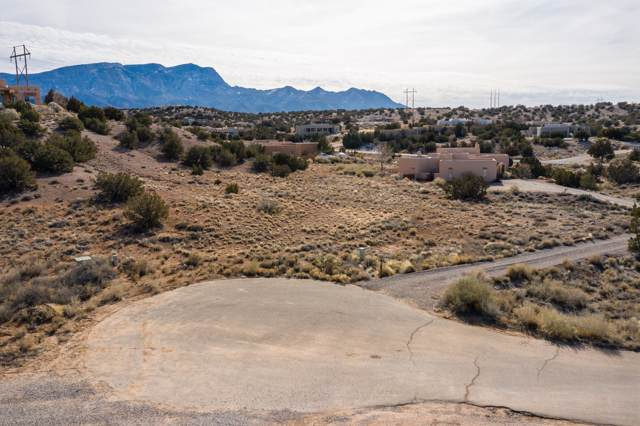 9 Ariel Court, Placitas, NM 87043 (MLS #960887) :: Campbell & Campbell Real Estate Services