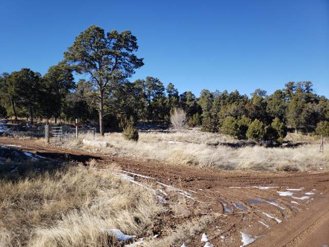 Ogaz Loop, Edgewood, NM 87015 (MLS #960969) :: Campbell & Campbell Real Estate Services