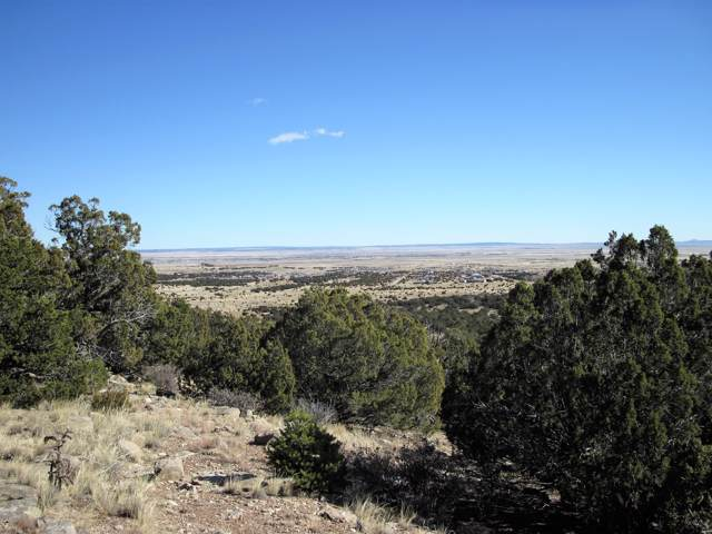 14 Sabrina Road Tract 9, Edgewood, NM 87015 (MLS #961042) :: The Bigelow Team / Red Fox Realty