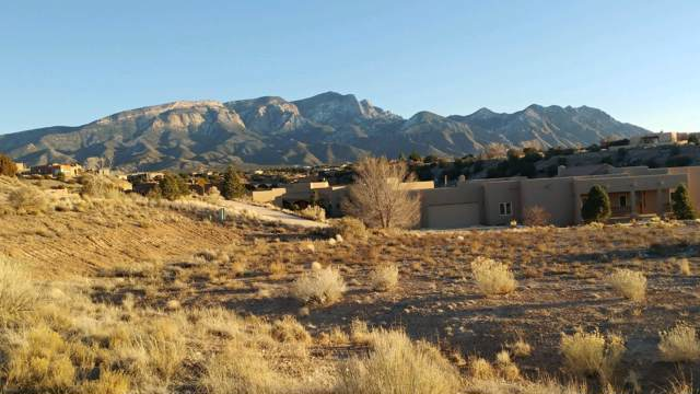 Anasazi Meadows Trail, Placitas, NM 87043 (MLS #961073) :: Campbell & Campbell Real Estate Services