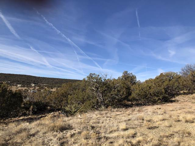 Puebla Colinas, Edgewood, NM 87016 (MLS #961085) :: Campbell & Campbell Real Estate Services