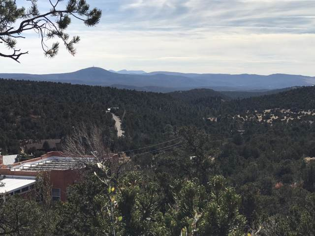 Pinon Trail, Cedar Crest, NM 87008 (MLS #961390) :: Campbell & Campbell Real Estate Services