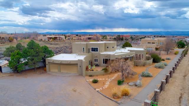11000 Palomas Avenue NE, Albuquerque, NM 87122 (MLS #961409) :: The Buchman Group