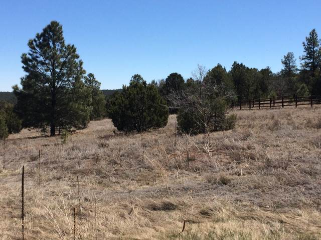 10 Woodland Court, Tijeras, NM 87059 (MLS #961498) :: Berkshire Hathaway HomeServices Santa Fe Real Estate