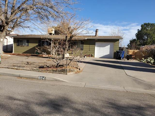 804 Mildred Street NE, Albuquerque, NM 87123 (MLS #961715) :: Campbell & Campbell Real Estate Services