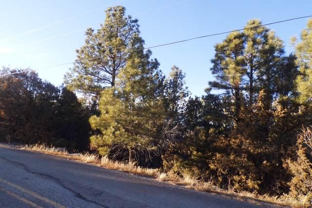 162 Holli Loop, Edgewood, NM 87015 (MLS #961751) :: The Bigelow Team / Red Fox Realty