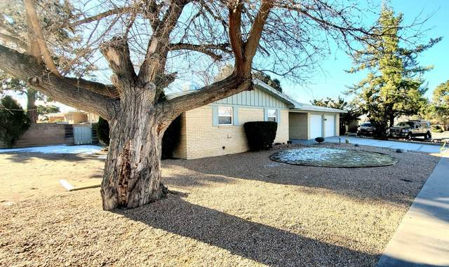2934 Wisconsin Street NE, Albuquerque, NM 87110 (MLS #961882) :: Campbell & Campbell Real Estate Services