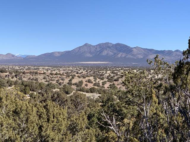 17 Canada Vista, Sandia Park, NM 87047 (MLS #962069) :: The Bigelow Team / Red Fox Realty