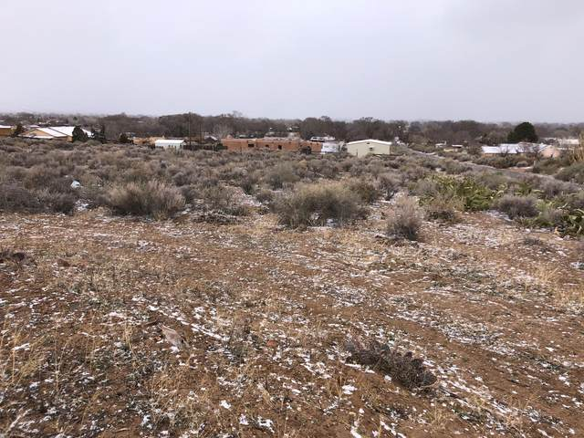 1526A West Ella Drive, Corrales, NM 87048 (MLS #962123) :: Campbell & Campbell Real Estate Services