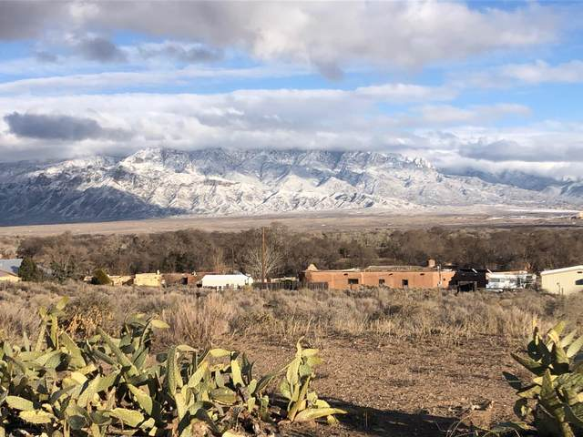 1526B West Ella Drive, Corrales, NM 87048 (MLS #962126) :: The Buchman Group