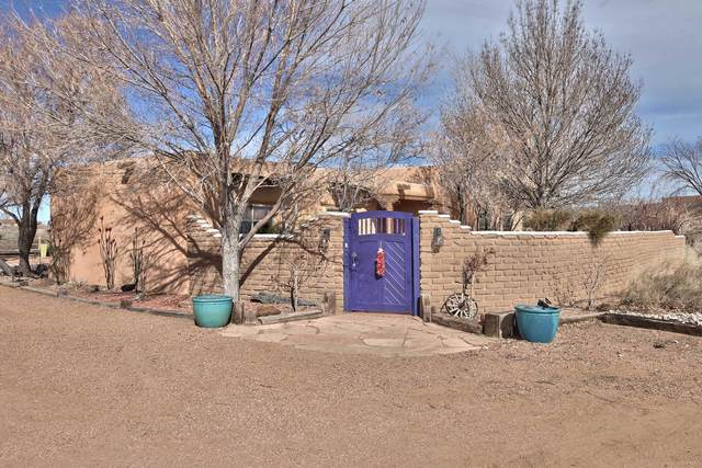 162 Tierra Encantada, Corrales, NM 87048 (MLS #962135) :: The Buchman Group