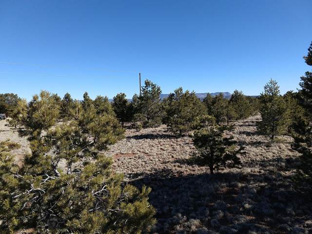 lot 31 Wallace Mesa Dr Trail, Datil, NM 87821 (MLS #962151) :: The Buchman Group
