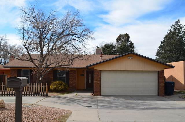 1717 Hiawatha Drive NE, Albuquerque, NM 87112 (MLS #962242) :: Campbell & Campbell Real Estate Services