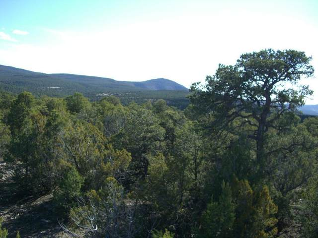 34 Mustang Mesa Trail, Tijeras, NM 87059 (MLS #962311) :: Campbell & Campbell Real Estate Services