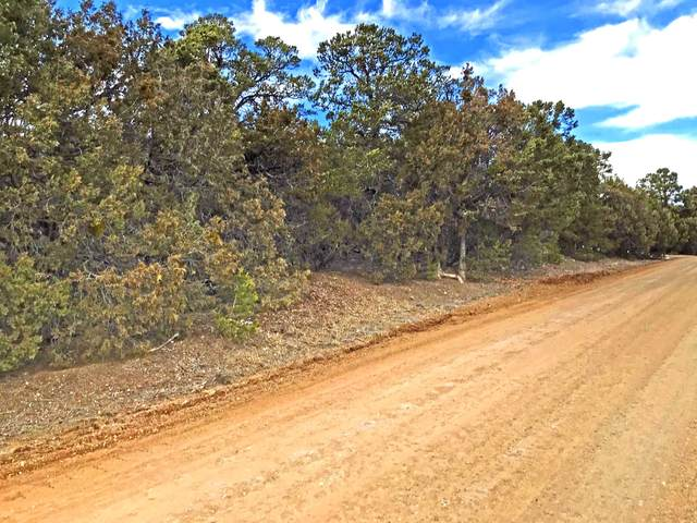 54 Nightingale Lane, Tijeras, NM 87059 (MLS #962353) :: Campbell & Campbell Real Estate Services