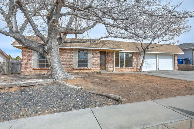 6925 Christy Avenue NE, Albuquerque, NM 87109 (MLS #962354) :: Silesha & Company