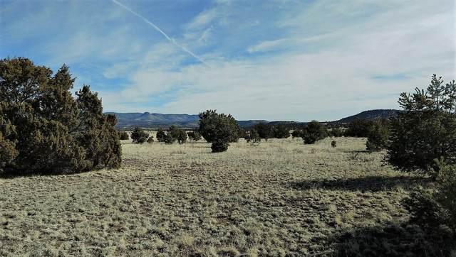 Meadow Road, Datil, NM 87821 (MLS #962375) :: The Buchman Group