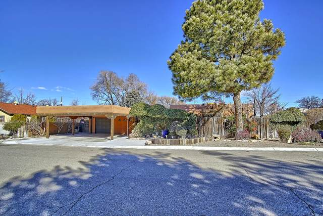 137 Carlito Road NW, Albuquerque, NM 87107 (MLS #962382) :: Silesha & Company