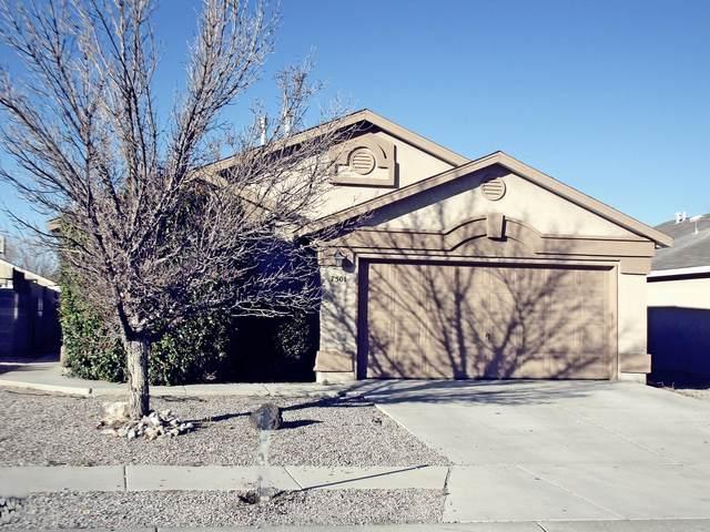 7501 Autumn Sky Road SW, Albuquerque, NM 87121 (MLS #962495) :: Silesha & Company