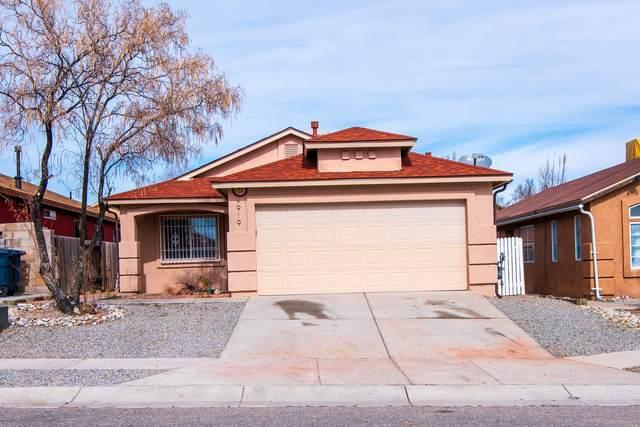 9919 Bridle Falls Avenue SW, Albuquerque, NM 87121 (MLS #962511) :: Silesha & Company