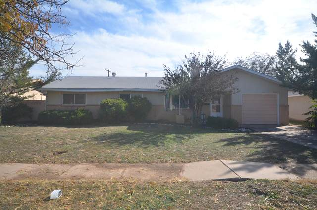 316 Swinging Spear Road, Roswell, NM 88201 (MLS #962649) :: Silesha & Company