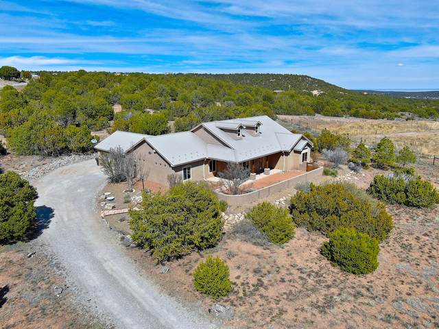 7 Meadow Land Court, Tijeras, NM 87059 (MLS #962687) :: Campbell & Campbell Real Estate Services