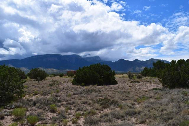 Lot 7 Apache Mesa Road, Placitas, NM 87043 (MLS #962700) :: The Buchman Group