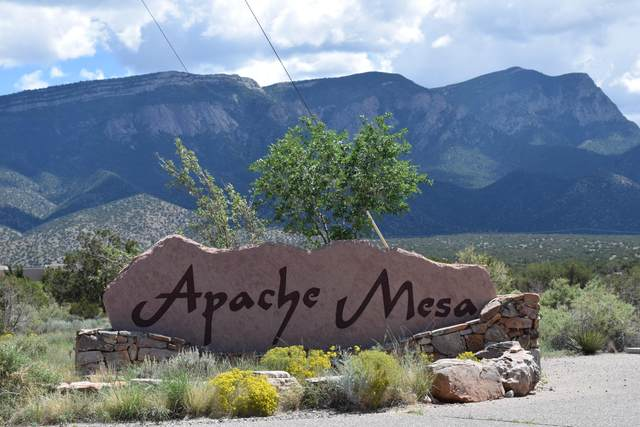 Lot 6 Apache Mesa Road, Placitas, NM 87043 (MLS #962701) :: The Buchman Group