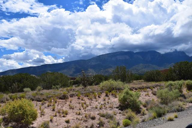 Lot 33 Apache Mesa Road, Placitas, NM 87043 (MLS #962705) :: The Buchman Group