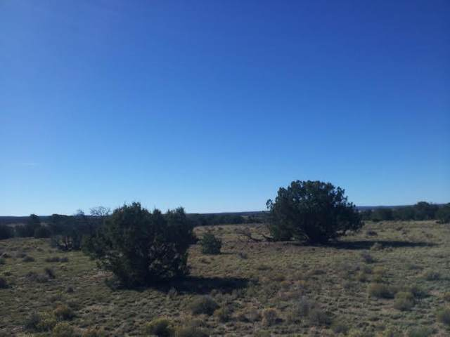 Pine Hill Road, Fence Lake, NM 87315 (MLS #962736) :: The Buchman Group