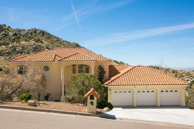 13516 Deer Trail Place NE, Albuquerque, NM 87111 (MLS #962739) :: The Bigelow Team / Red Fox Realty