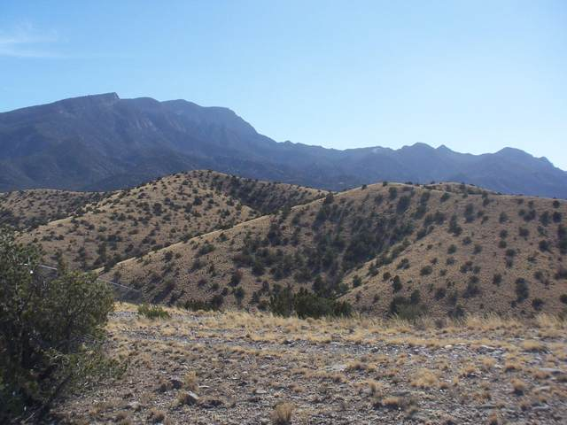 Camino Alto, Placitas, NM 87043 (MLS #962770) :: The Bigelow Team / Red Fox Realty