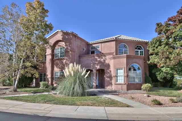 11047 Bridgepointe Court NE, Albuquerque, NM 87111 (MLS #962806) :: The Bigelow Team / Red Fox Realty