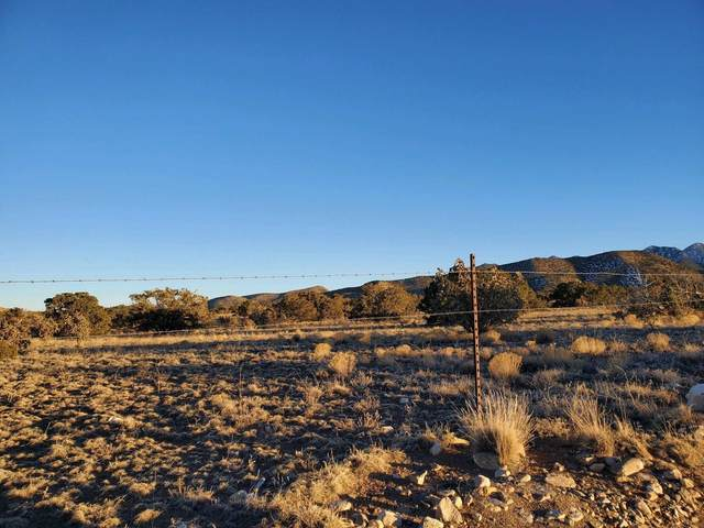 0 Old Windmill Trail, Cerrillos, NM 87010 (MLS #962858) :: Campbell & Campbell Real Estate Services