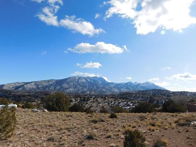 4 Tejon Canon Road, Placitas, NM 87043 (MLS #962899) :: The Buchman Group