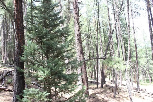 Beryl Road, Jemez Springs, NM 87025 (MLS #962940) :: Berkshire Hathaway HomeServices Santa Fe Real Estate